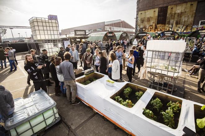 DGTL Amsterdam : bientôt un festival complètement vert ?