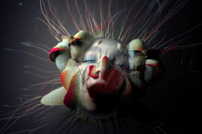 Découvrez le visuel hypnotisant de Björk pour son nouveau clip 'Tabula Rasa'