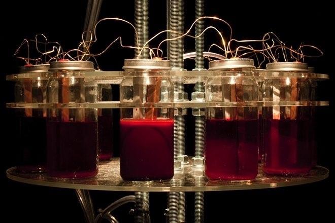 Un artiste russe a créé un synthé alimenté par son propre sang
