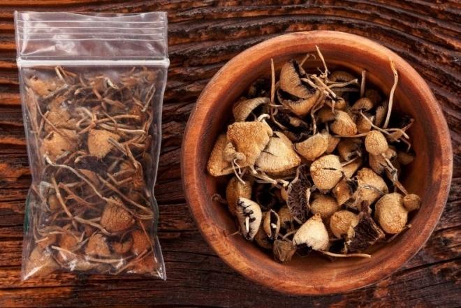États-Unis: La ville d'Oakland décriminalise les champignons hallucinogènes