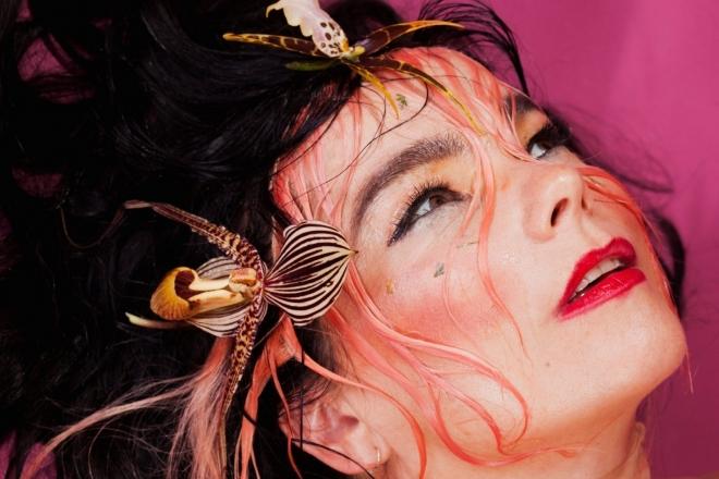 Björk a composé une œuvre générative avec une intelligence artificielle