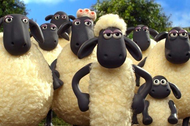 Another World festival doit annuler pour cause de… caca de mouton